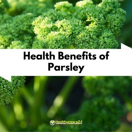 https://healthynews24-wi90aan73hqjq.netdna-ssl.com/wp-content/uploads/2017/02/Health-Benefits-of-Parsley.jpg
