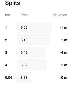 Running challenge day 2